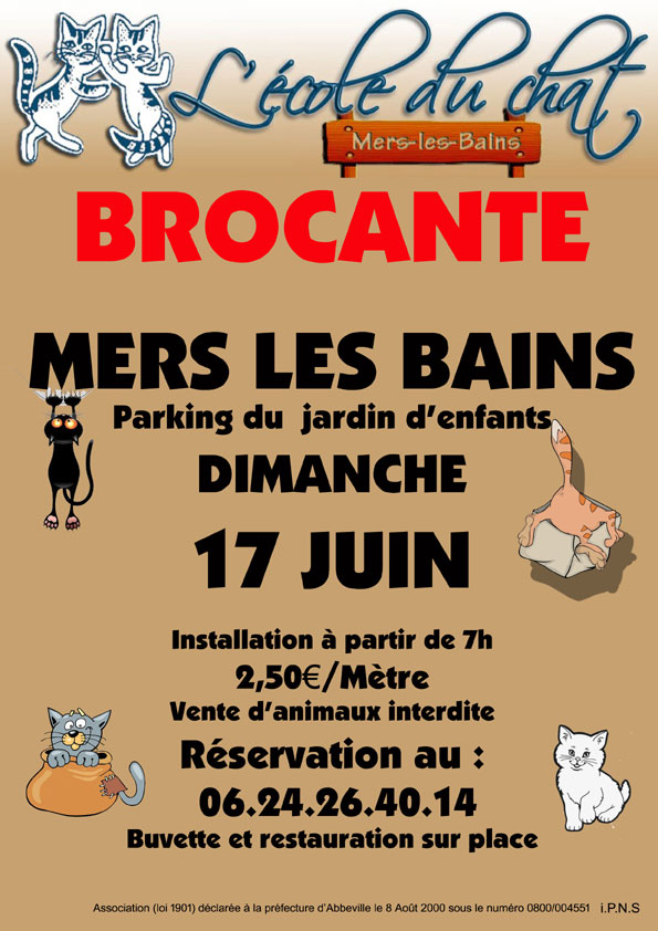 chat abbeville